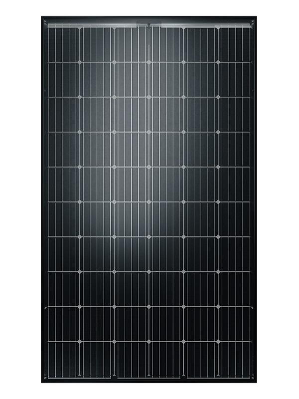 SOLARWATT Glas-Glas-Modul 315 Watt Vision 60M style